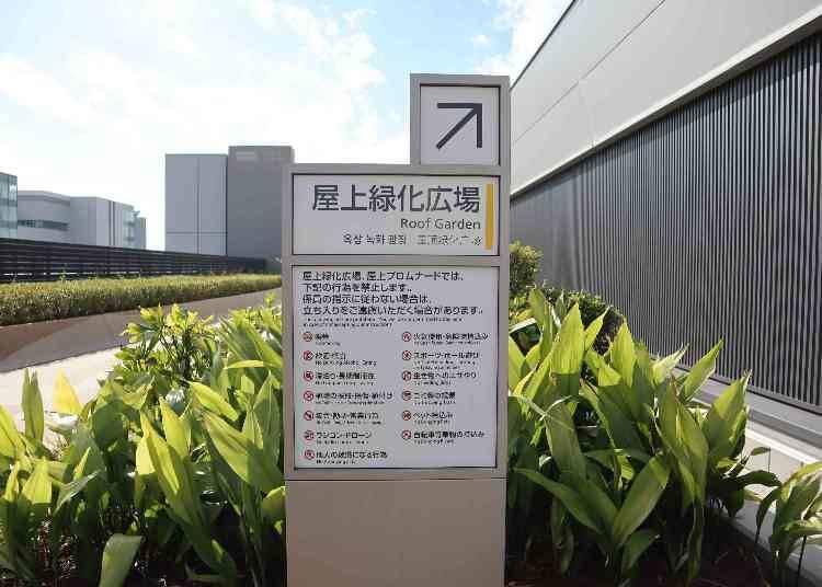 可以飽覽東京灣岸區景色的屋頂綠化廣場