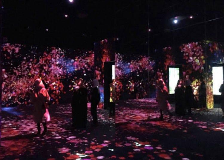 2. 思わずSNSにアップしたくなる「森ビルデジタルアートミュージアム:エプソン チームラボボーダレス」