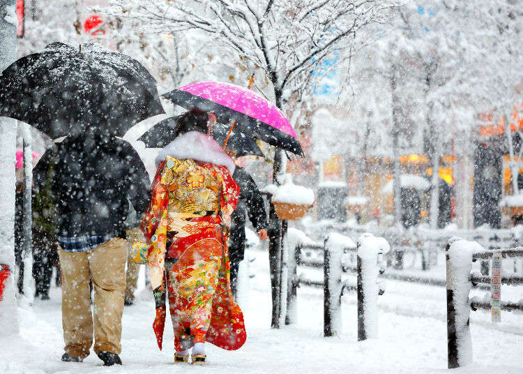 Does It Snow in Tokyo? Tokyo Snowfall Probability Based on Amount and Number of Snow Days