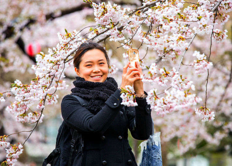 Visiting Japan: Survival Tips From 4 First-Time Visitors!