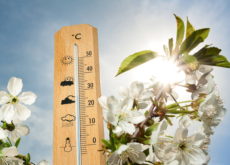 1. Spring Weather in Japan: Know before you go!