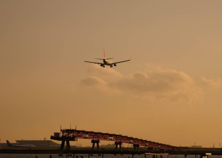 #5. 羽田空港 - Haneda Airport (756.6k Photos)