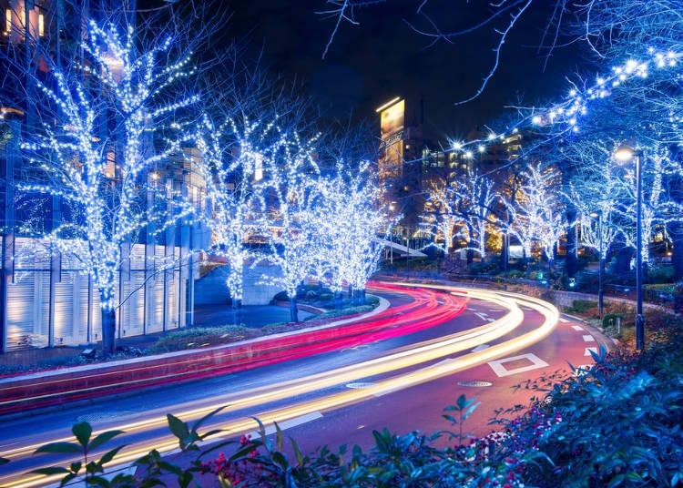 December: Beautiful Christmas Illumination!