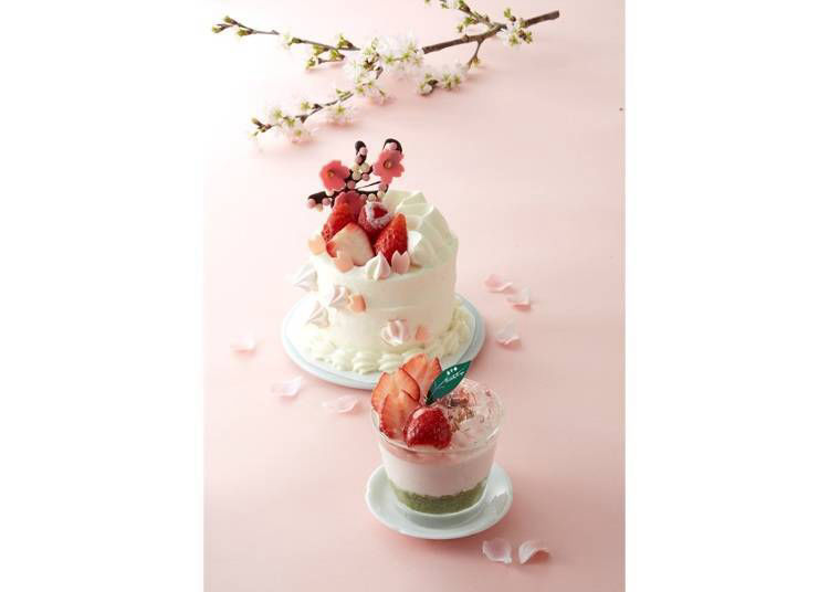 8. Patisserie Mon Cher: A Gorgeous Shortcake Topped with Chocolate Sakura Blossoms