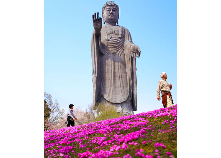 Enjoy a day at the Ushiku Daibutsu