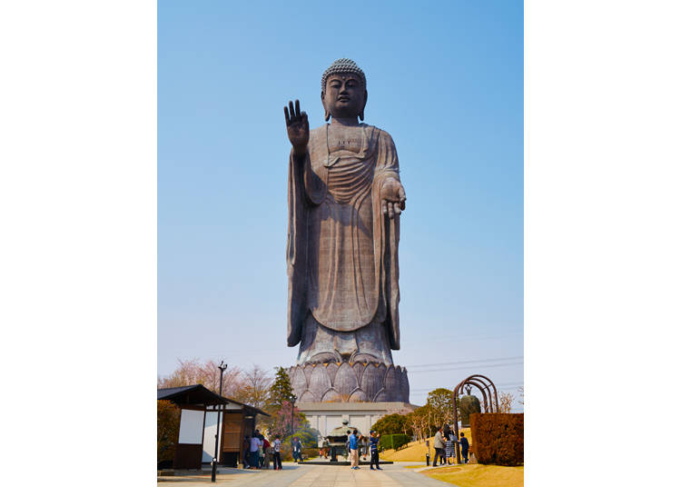 Enjoy the Scenery around the Ushiku Daibutsu