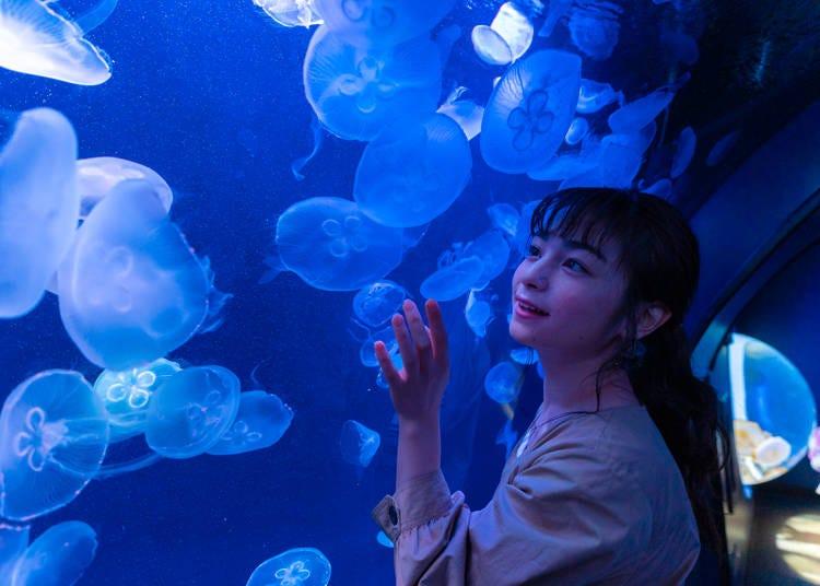 魅力4.營造出幻想空間的「水母隧道」