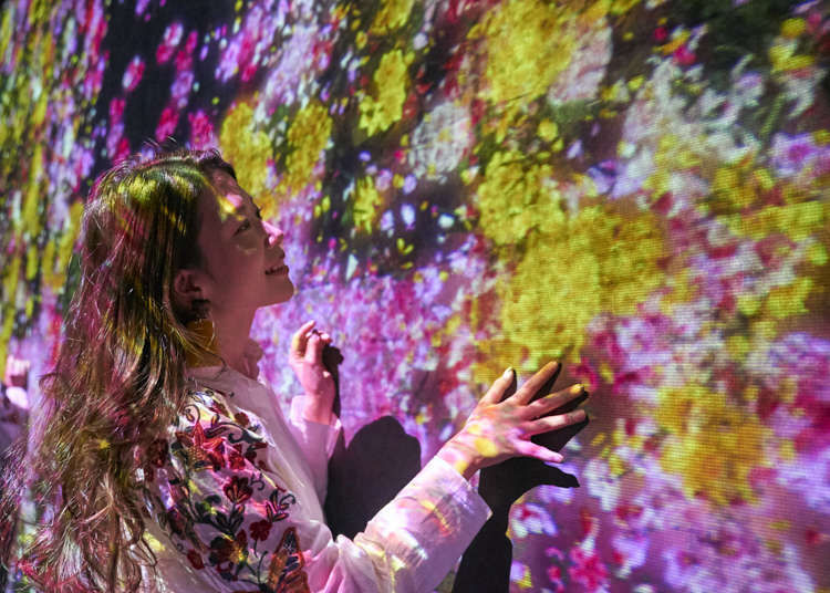 """台场最新观光景点""""Mori Building DIGITAL ART MUSEUM:teamLab Borderless""""跟着熟知其魅力的达人一起来一趟完美的参观攻略!"""