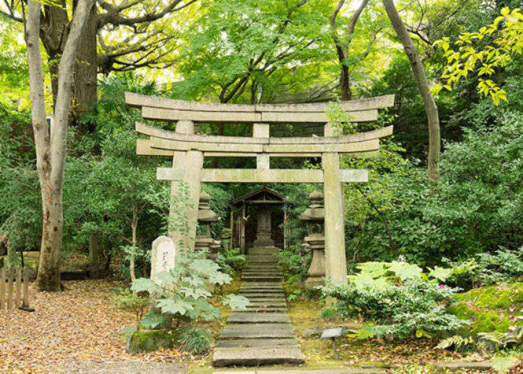 Inside Nezu Art Museum Authentic Japanese Garden In The Heart Of Tokyo An Oasis Of Omotesando Live Japan Travel Guide