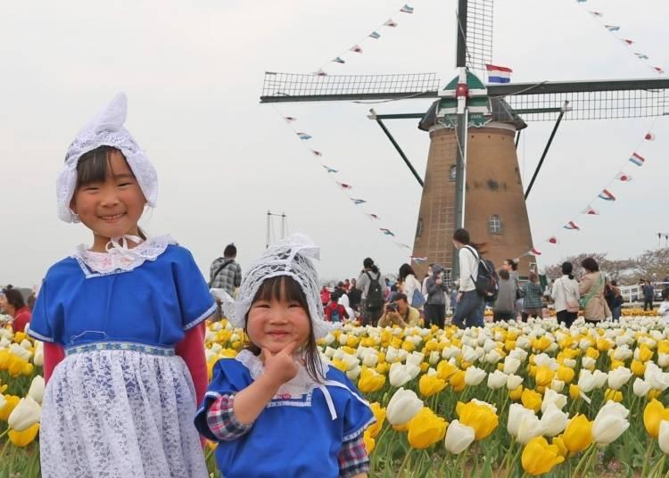 Sakura Tulip Festa: A family-friendly Japanese festival for all ages!