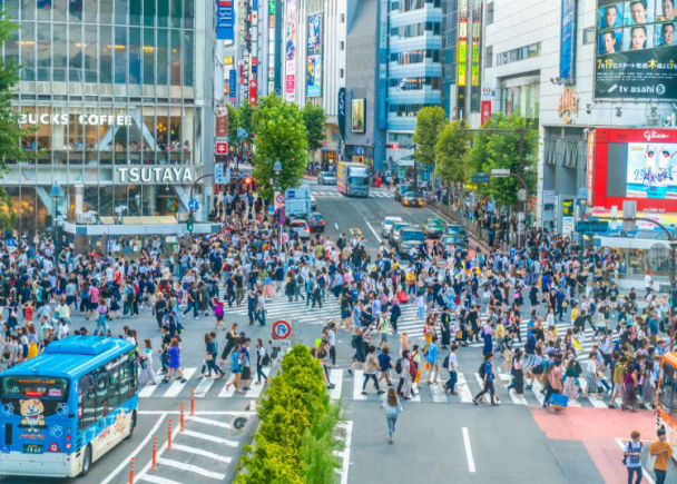 What's Shibuya in Tokyo like? Best spots for sights, sounds, and shopping!