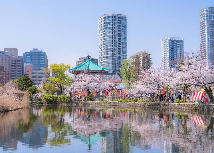 上野に行くベストタイミング