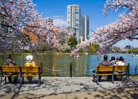 '우에노공원'은 벚꽃만이 아니다! 계절에따라 다른 사계절 꽃구경과 이벤트를 소개.