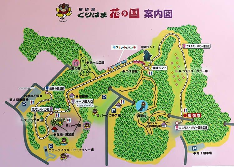 What is Kurihama Flower Park?