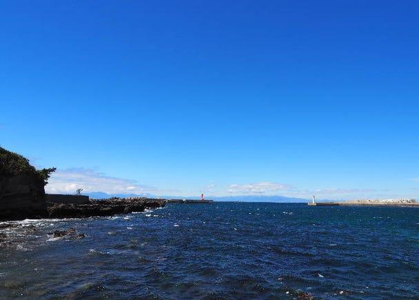 ボーナススポット:「城ヶ島」の自然を堪能!