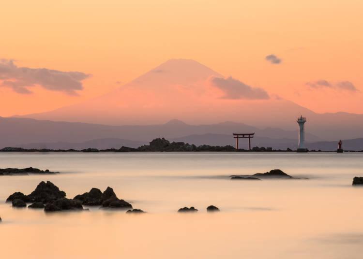 使用「Hayama Excursion Ticket」推薦觀光景點