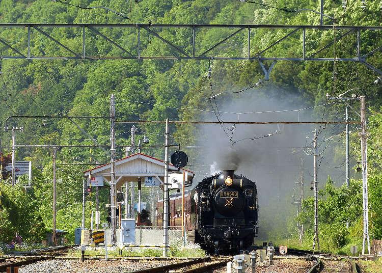 SL復古蒸汽火車到當地美食!最火熱的「熊谷」必去觀光景點5選!