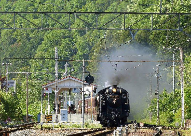 蒸気機関車でノスタルジックな旅に出よう「SLパレオエクスプレス」