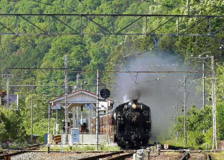 搭上蒸汽火车「SL PALEO EXPRESS」来趟怀旧之旅吧
