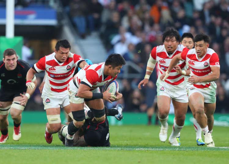 【世界大賽將近】初學者也可以理解的「日本橄欖球的基本知識和規則」