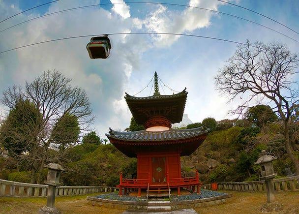 3. Seichi Park – A romantic way to enjoy the sakura