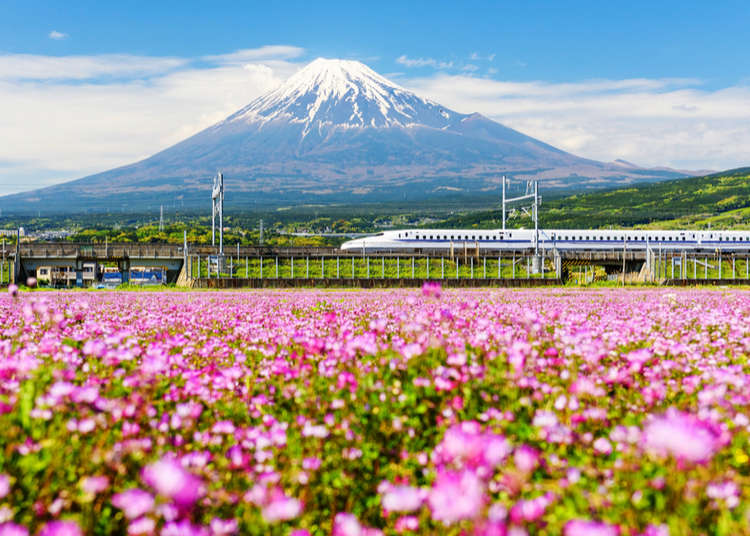 Top 10 things to Do in Japan May 2020!