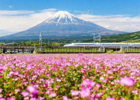 Top 10 Things to Do in Japan in May 2021