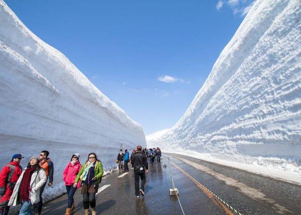 4. Get frosty at the Tateyama Kurobe Alpine Route