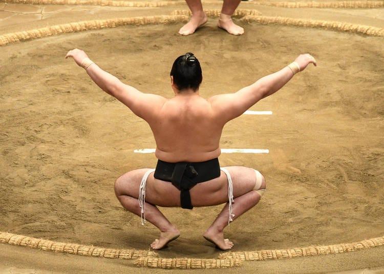 7. Tokyo Sumo Season