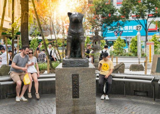 9. Hachiko Statue: The symbol of Shibuya