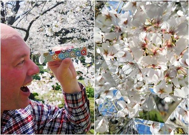 일본 여행에 도움이 되는 최신 일본풍 굿즈 5개. 여행의 선물로도!