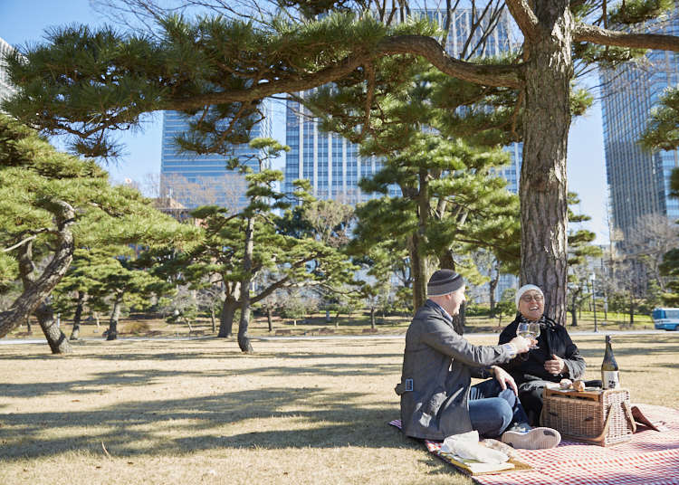The Garden of Edo