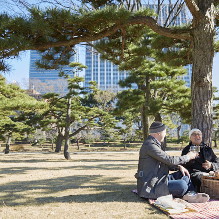 Tokyo Half-Day Itinerary Tours: Trails of the Old Shoguns' Lodgings at Edo Castle and the Imperial Palace, Marunouchi and Yaesu