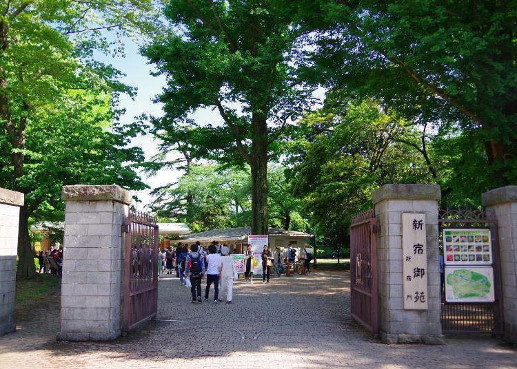 Tokyo Guide: Top 5 Tokyo Sightseeing Spots Popular with Foreigners!
