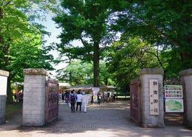 늦가을에 가기 좋은 외국인에게 인기있는 도쿄 관광 명소 TOP5!