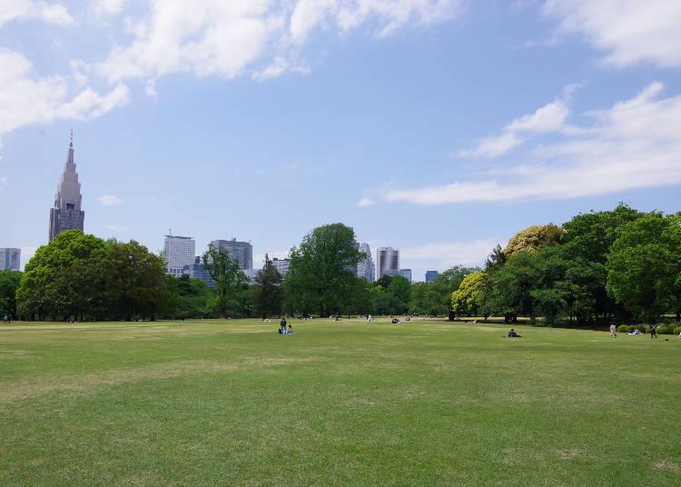 新宿御苑人氣的原因1:即使身處在市中心,也能輕鬆享受到豐富綠意