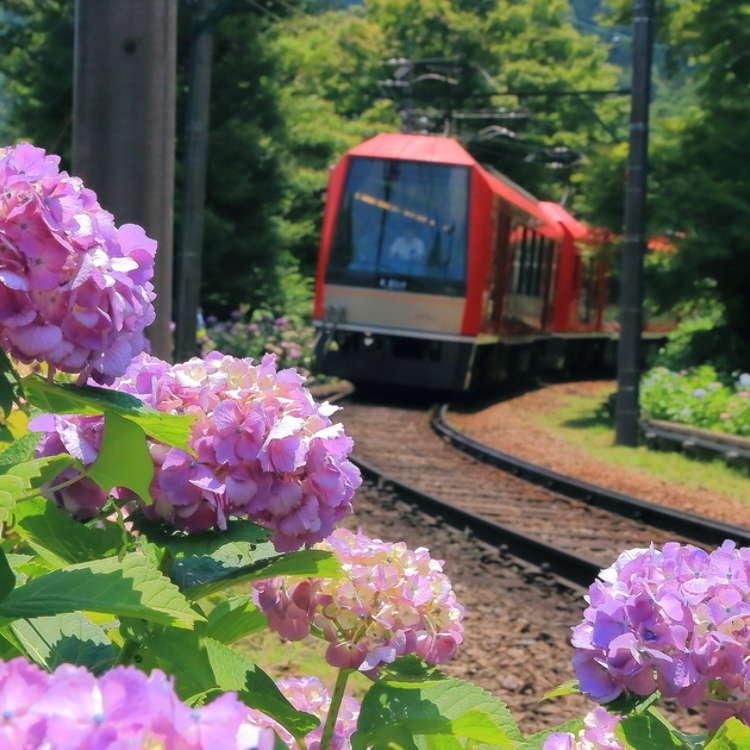Complete Hakone Area Guide: Onsen Baths, Scenic Lake Scenery & Mount Fuji Views!