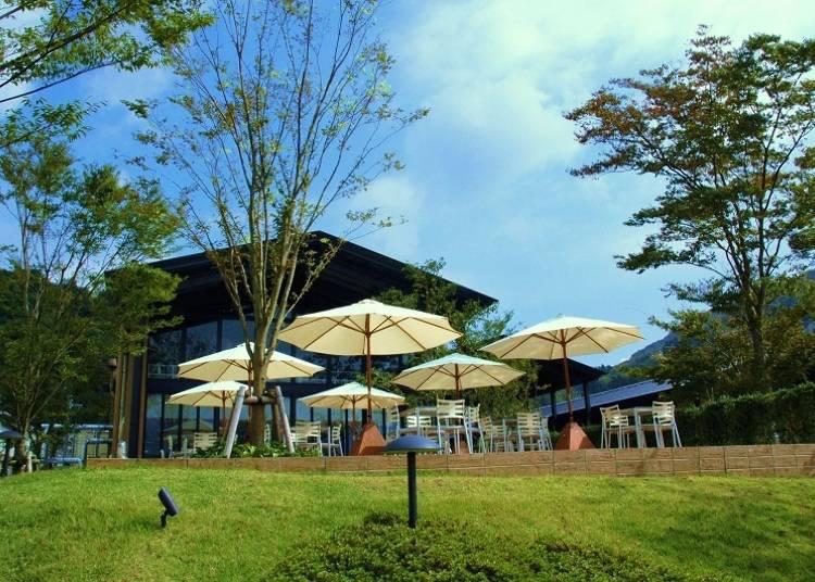 ■本場イタリアの味を自然豊かな箱根の景観とともに楽しむ「ラ・テラッツァ芦ノ湖」