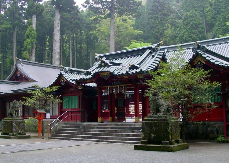 ■箱根を代表するパワースポット!早朝の「箱根神社」にお参り