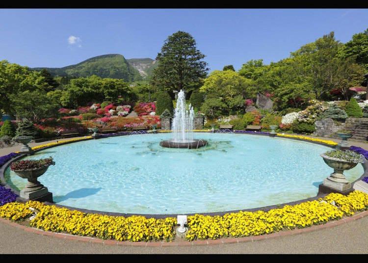 箱根一日遊行程⑤日本第一座法式花園「強羅公園」