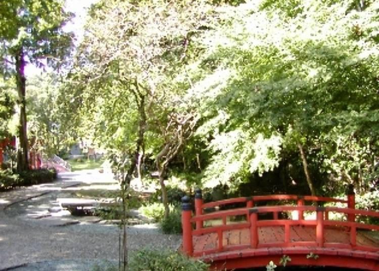 箱根景點⑩萬葉公園