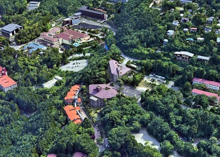 箱根溫泉旅館③森林浴與溫泉雙享受「Verde之森 箱根小涌谷溫泉」