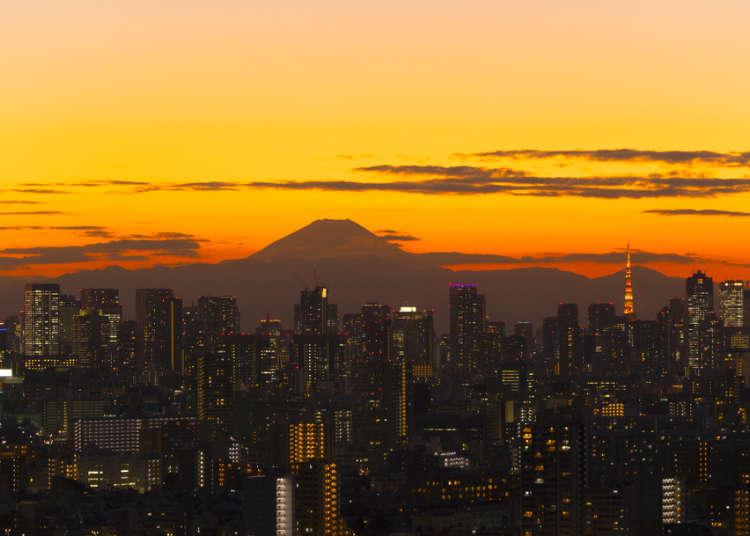 일본여행 상급자가 직접 가보고 감동한 도쿄 절경 명소 베스트