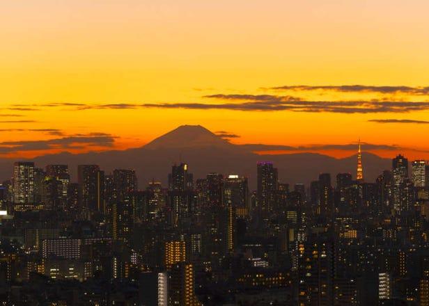 東京の絶景スポットといえば? 外国人10人に聞いたらまさかの珍スポットも