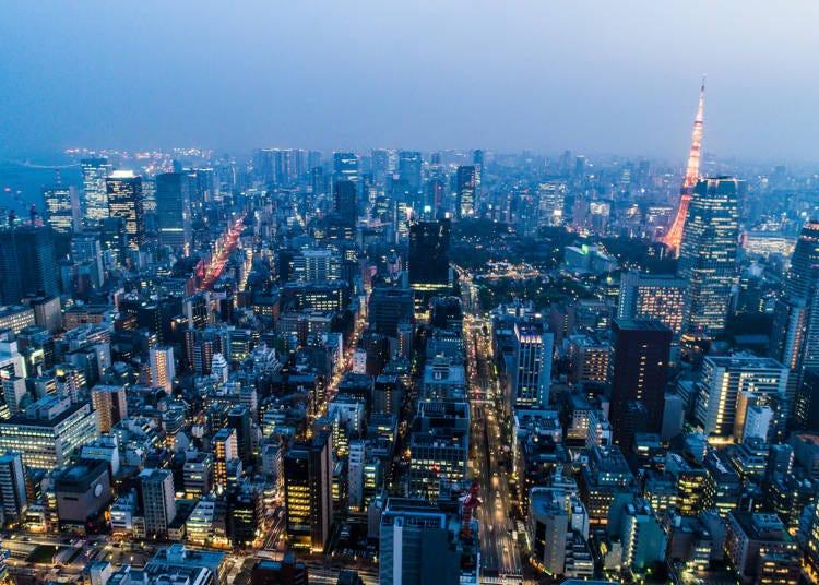 도쿄의 호화스러운 절경 명소를 선호하는 외국인들도 있다.