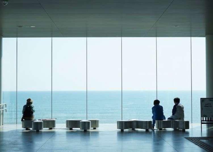 可以觀賞海天一線的絕景!連結「日立」車站的天空絕景咖啡廳「Sea Birds Cafe」