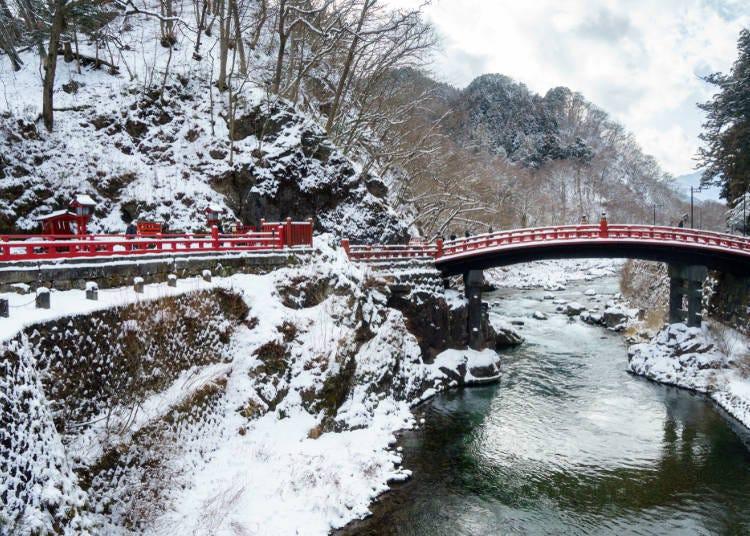 无论是秋日枫红亦或冬季白雪都不能错过!美景伴随四季变换的日光
