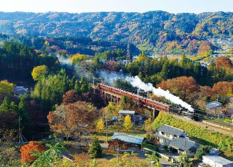 从东京都心也能轻松出发,每个季节都值得你一去的「秩父观光景点」推荐4选
