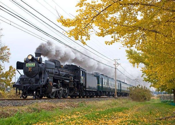 错过再等一年!蒸汽火车「SL PALEO Express」铁道之旅乘车重点部分彻底解说