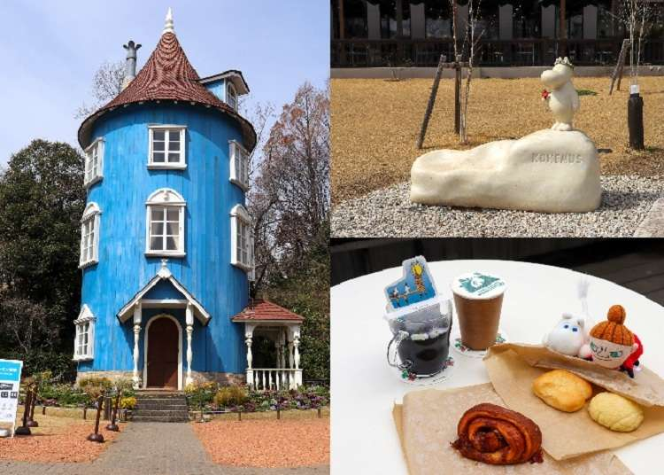 Complete Guide to Japan's Moominvalley Park: Highlights, Recommendations, and More! | LIVE JAPAN travel guide